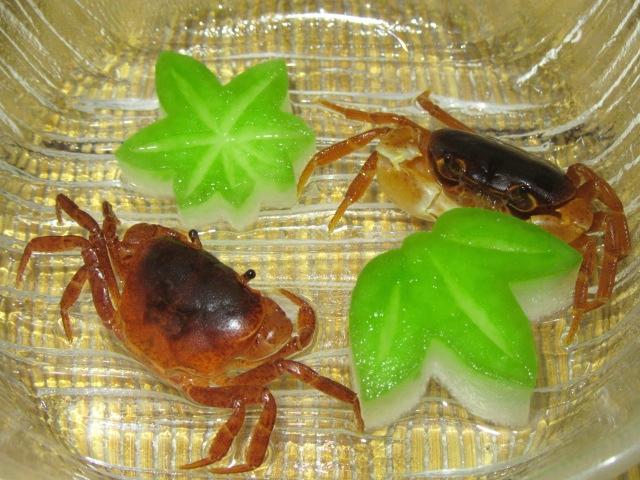 沢蟹と冬瓜,夏の飾り切り