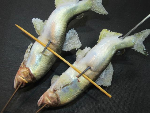 鮎の串打ち方法の仕上がり